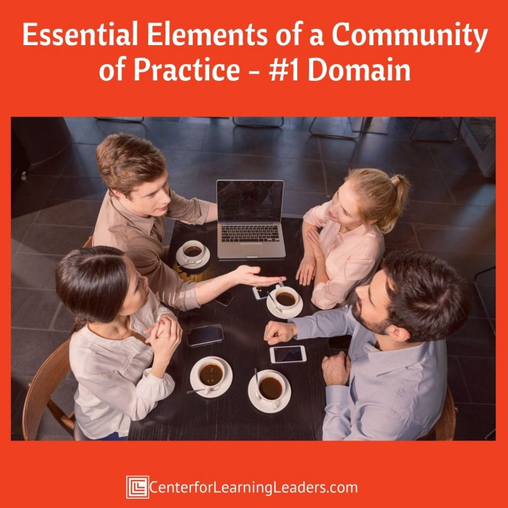 Essential elements of a community of Practice: Domain.